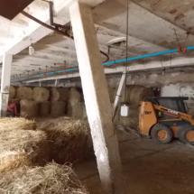 Dlandhausungarn-haus kauf-verkauf in Ungarn- immobilie in stadt Győr-hausverwaltung in west-ungarn-cecilia lux maklerin