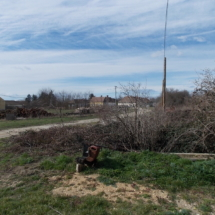 Vlandhausungarn-haus kauf-verkauf in Ungarn- immobilie in stadt Győr-hausverwaltung in west-ungarn-cecilia lux maklerin