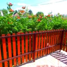 1 landhausungarn-haus kauf-verkauf in Ungarn- immobilie in stadt Győr-hausverwaltung in west-ungarn-cecilia lux maklerin