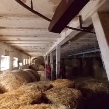 Wlandhausungarn-haus kauf-verkauf in Ungarn- immobilie in stadt Győr-hausverwaltung in west-ungarn-cecilia lux maklerin